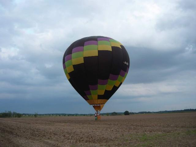 2011_leichte landung.jpg