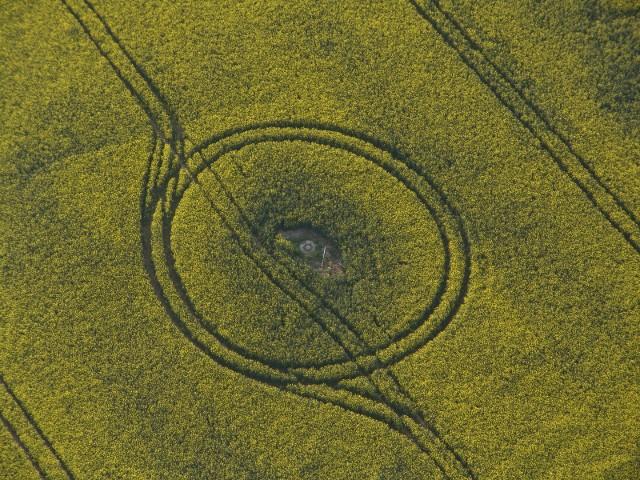 2007_kunst aus vogelsicht.JPG